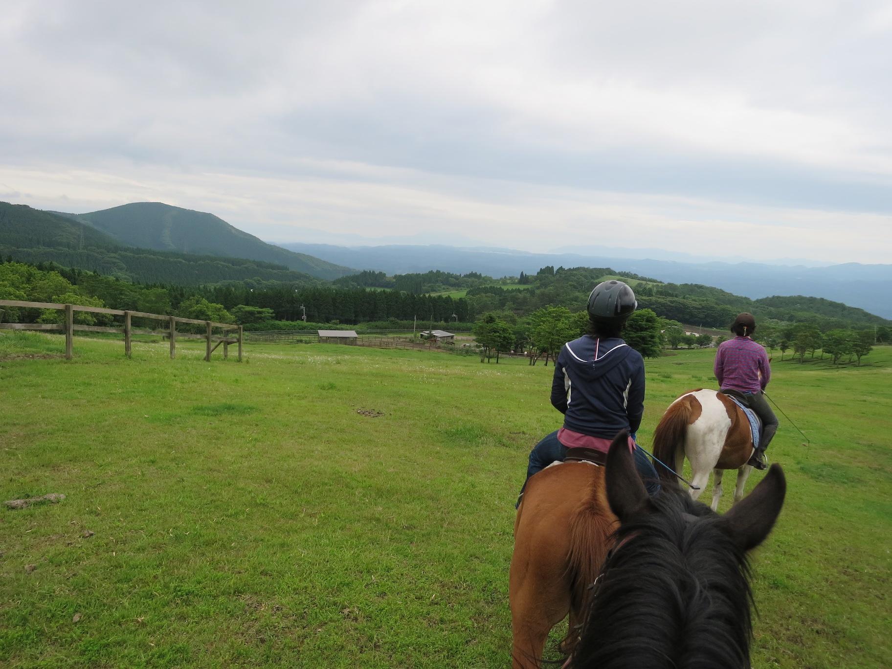 乗馬中の眺め